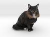 Custom Cat Figurine - Sora 3d printed